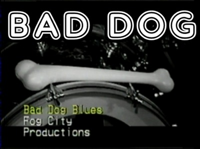 BAD DOG BLUES MR CLEAN HEAD